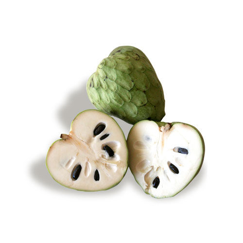 exotic fruit chirimoya mc garlet