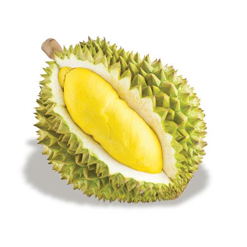 Durian McGarlet