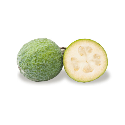 exotic fruit feijoa mc garlet