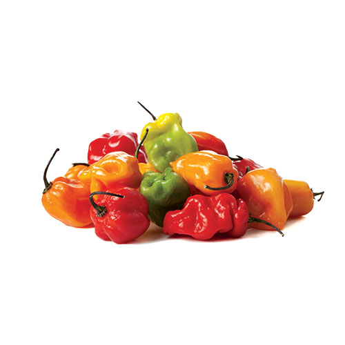 exotic fruit pimento habanero mc garlet