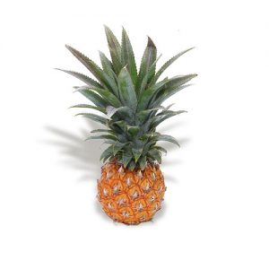 exotic fruit pineapple baby mc garlet