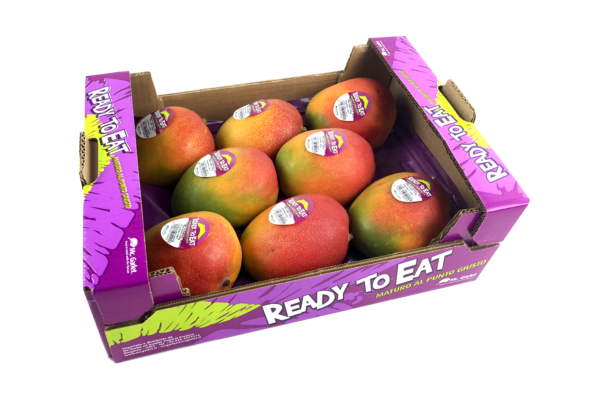 MANGO-READY copia